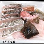 幻の高級魚 天然本クエ鍋セット(冷凍)約2人前 (地物 山陰浜坂産)(クエ、くえ、九絵、アラ)国内産 ギフトに