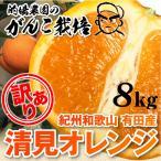 清美 訳あり オレンジ 8.0kg 果物 フルーツ 柑橘系 清見 きよみ 有田市 産地直送 8kg 自宅用 箱買い