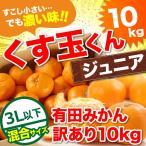 みかん 10kg 訳あり 有田 みかん くす玉くんジュニア 直送  安い 蜜柑 送料無料 産地直送 自宅用 小粒 箱買い 糖度