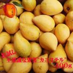 カニステル 【お試し】400g【発送1月〜4月】 なにこれ?ジャガイモ?卵の黄身?