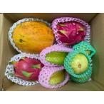 【送料無料】食べ切サイズ!トロピカルフルーツ 4種類(アップルマンゴー/スナックパイン/パッションフルーツ/カニステル)