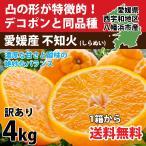 デコポン 同品種 みかん 不知火 訳あり 約4kg 濃厚  甘い 送料無料  愛媛産 3営業日以内に出荷