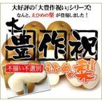 大豊作祝い梨 5kg(不ぞろい・不選別・訳あり) 【幸水・豊水】【送料無料】