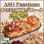 パネトーネ 道の駅 阿蘇 菓子ケーキ 部門 人気No.1 パン工房 豆の木 イタリア 伝統菓子