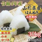 米 お米 はえぬき 玄米30kg 令和元年産 山形産 白米・無洗米・分づきにお好み精米 送料無料 当日精米