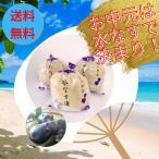 水ナス漬け5個入 水ナス用薬味土佐特産生姜付 ギフト贈答包装