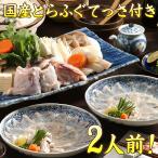 半額セール 国産 熊本県天草産 てっさ付きとらふぐ鍋セット 2〜3人前 【送料無料】 ギフト てっちり