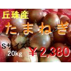 たまねぎ Sサイズ 20kg 北海道 丘珠産