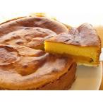 チーズケーキ パンプキン 豆腐 ハロウィン ベイクド アレルギー対応:卵・乳製品不使用
