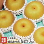 新潟県産 日本梨 愛宕10kg(10〜16個位) 岩福農園/ギフト プレゼント お祝い 贈り物 のし無料 送料無料