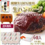 父の日 プレゼント 飛騨牛 肉 生ハンバーグ 120g6個 まとめ買い お礼 お返し送料無料 お取り寄せ グルメ 食品 ギフト