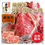 肉 牛肉 訳あり 飛騨牛 切り落とし肉 500g 250×2p  送料無料 お取り寄せ グルメ 和牛