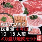 メガ盛り焼肉セット 10~15人前 今なら豚バラ300gおまけ!A