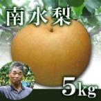 【完売】南水梨5kg箱(生産者・片山)