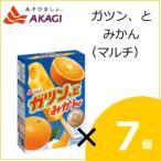 赤城乳業 ガツン、とみかん(マルチ) (58mlx5本)×7個入り