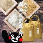 お米 10kg 5kg 2袋 森のくまさん 熊本県産 送料無料 平成30年産 発送日精米 選べる 玄米 白米 分づき米