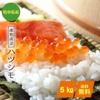 ハツシモ お米5kg 玄米/分づき精米無料(平成30年産) 岐阜県産