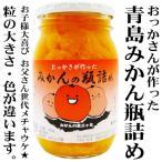 おっかさが作った 青島 みかん の瓶詰め 450g 季節限定商品 お子様大喜び!お父さん世代メチャうけ!