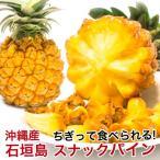 スナックパイン 石垣島産 沖縄 パイナップル 500g〜800g 安心保証付き