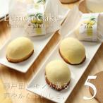 広島レモン スイーツ ギフト 瀬戸田レモンケーキ 5個入り ジョリーフィス 広島 お試し お祝い 内祝 お返し 誕生日