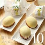 広島レモン スイーツ ギフト 瀬戸田レモンケーキ 10個入り ジョリーフィス 広島 お試し お祝い 内祝 お返し 誕生日 母の日
