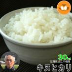 米 玄米 30kg 滋賀県近江八幡産 キヌヒカリ 内野営農組合 29年産 環境こだわり米(減農薬) 送料無料