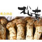 松茸 国産 松茸 コロ(小型 蕾・中開き)約100g  奥会津産 岩手県産 マツタケ 採りたて 新鮮 産地直送 ギフト対応