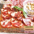 生ハム スペイン産イベリコ豚 しっとり濃厚 大トロ生ハム 40g  送料無料