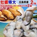 グルメギフト 牡蠣 かき 広島県産 (特産品 名物商品) ギフト 牡蠣) L 広島カキ 2kg《1kg(正味850g)×2袋》広島産 送料無料