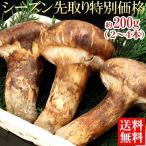まつたけ 送料無料 松茸 マツタケ 中国産松茸 約200g 市場直送(gn)
