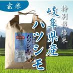 30年産 特別栽培米 岐阜県産 美濃ハツシモ 玄米 5kg