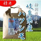 30年産 特別栽培米 岐阜県産 美濃ハツシモ 精米 5kg 得トク2WEEKS0318