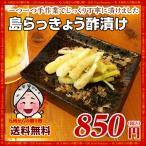 訳あり お取り寄せ 沖縄島らっきょう(60g×1袋) 送料無料  ポイント消化 食品 島らっきょう