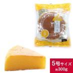 六甲山麓牛乳仕込み 遊酪舎しっとりしたちーずけーき チーズケーキ 5号 約300g ポイント消化 ポスト投函便 送料無料