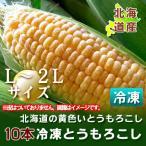 「北海道産 とうもろこし 冷凍」 トウモロコシ 北海道の黄色いとうもろこし(冷凍)L〜2Lサイズを10本 価格 2190円