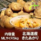 「北海道 じゃがいも 送料無料 きたあかり」 北海道産 ジャガイモ 北海道産 黄色いじゃがいも キタアカリ 栗じゃが M〜Lサイズ 5kg 価格 1999円