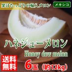 【送料無料】メキシコ産 ハネジューメロン(Honey dew melon) 5〜6玉入り/箱