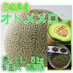 茨城県産 オトメメロン 秀 2L 5玉入 (青肉) 1箱5kg (送料別)