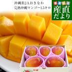 送料無料 沖縄県より産地直送 JAおきなわ 完熟マンゴー 約1.5キロ(3から6玉入) マンゴー ※クール便
