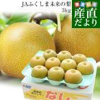 送料無料 福島県より産地直送 JAふくしま未来の梨 5キロ(10玉から16玉) なし ナシ