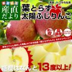 お一人様2箱まで! 送料無料 JAつがる弘前 葉とらず太陽ふじりんご 糖度13度以上 約3キロ(9から13玉) 林檎