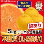 デコポン わけあり 5kg 送料無料 瀬戸内 香川 みかん 激安 柑橘 フルーツ 果物