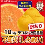 デコポン わけあり 10kg 送料無料 瀬戸内 香川 みかん 得盛り 柑橘 フルーツ 果物