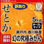 せとか わけあり 5kg 送料無料 瀬戸内 香川 みかん 激安 柑橘 フルーツ 果物