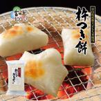 杵つき白餅(おせち 雑煮 お鍋 お年賀 富山土産 新大正もち)