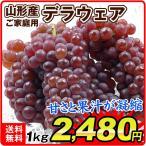 ぶどう デラウェア(約1.2kg)お買得 大阪・奈良産 ご家庭用 葡萄 ブドウ 国華園