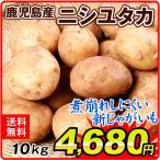 新じゃがいも 【超買得】鹿児島産 ニシユタカ 10kg1箱 送料無料 ジャガイモ 春じゃがいも 煮込み料理に最適