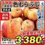 りんご 色むらふじりんご 10kg1箱 青森県産 ご家庭用 訳あり 林檎 食品 グルメ 現在出荷中 果物