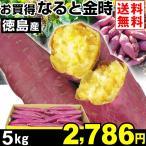 さつまいも 徳島産 お買得 なると金時 5kg1組 送料無料 ご家庭用 芋 食品 グルメ