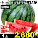 スイカ 1玉 熊本県産 おいしいすいか 1箱 西瓜 果物